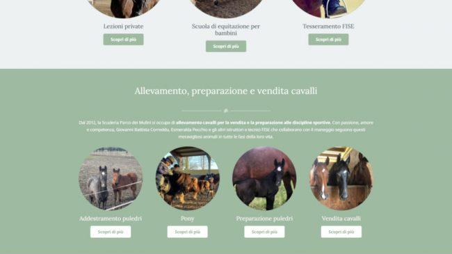 Scuderia Parco dei Mulini – Scuola di Equitazione Canegrate